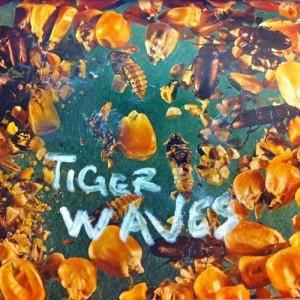 tiger waves - fields