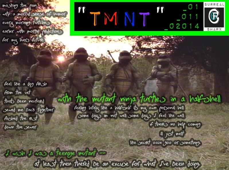 TMNT poem