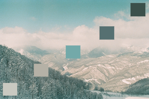 natual palettes - nature color palettes